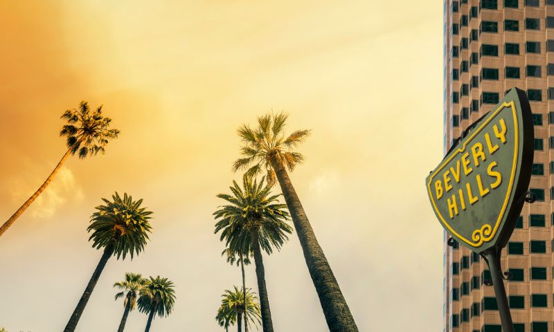 Beverly hills trees